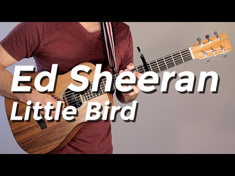 Ed Sheeran Little Bird Guitar Tutorial By Shawn Parrotte Youtube