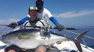 The Blue Gorilla- Yellow Fin Tuna fishing Oman,