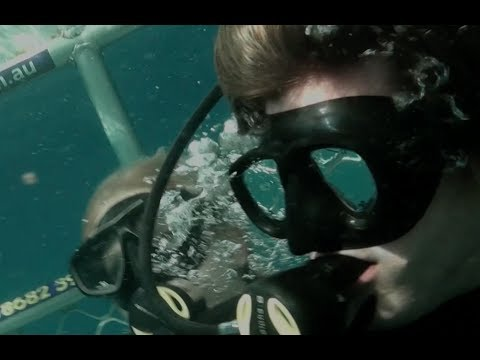 "Open Water 3 Cage Dive (2017) Exclusive Clip ""Boat Hit By Wave"" HD, Shark Week"