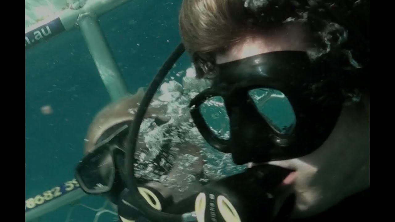 Open water 3 cage dive 2017 exclusive clip boat hit by wave hd shark week youtube - Open water 3 cage dive ...