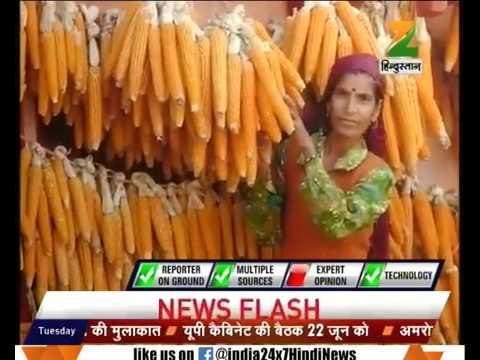 Uttarakhand govt planning to form organic act to encourage organic farming  Report By Faheem Tanha