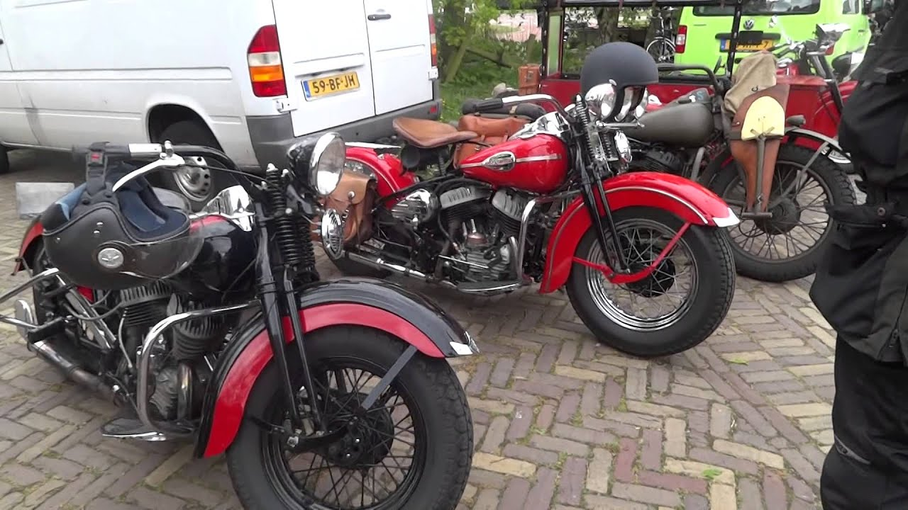 Harley Ace