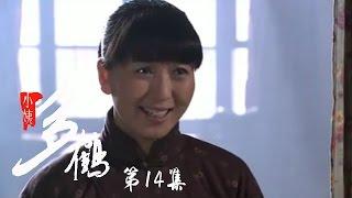 小姨多鹤 14 | Auntie Duohe 14 (主演:孙俪 姜武 闫学晶)