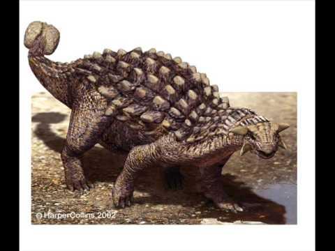 Dinosaurios Y Animales Prehistoricos
