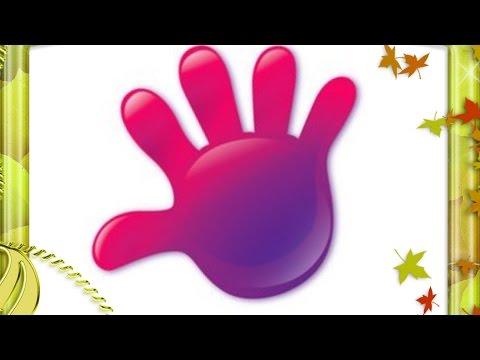 Как называются пальцы руки
