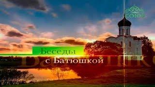 Протоиерей Димитрий Смирнов. Беседы с батюшкой ТК «Союз» 12 мая 2019 г.