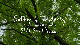 Softly & Tenderly | Brian Doerksen feat. Stephanie Esau | Official Lyric Video
