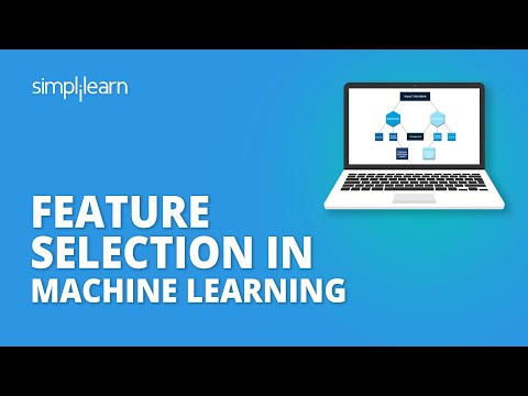 Everything You Need to Know About Feature Selection