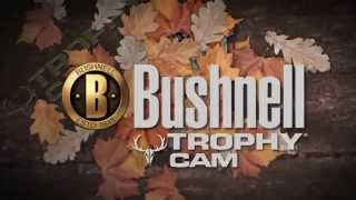 Bushnell Trophy Cam - Présentation Thumbnail