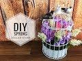 Spring Birdcage DIY | Dollar Store | Home Decor