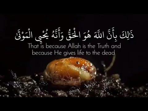 ذلك بأن الله هو الحق وأنه يحيى الموتى وأنه على كل شىء قدير Youtube