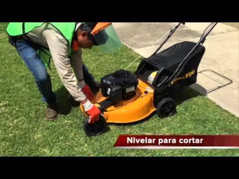 Capacitacion Podadoras thumbnail