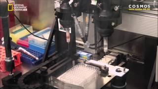 El Futuro Por Stephen Hawking S01E01 El Mundo Virtual 720p HDTV SPANiSH X264 AC3