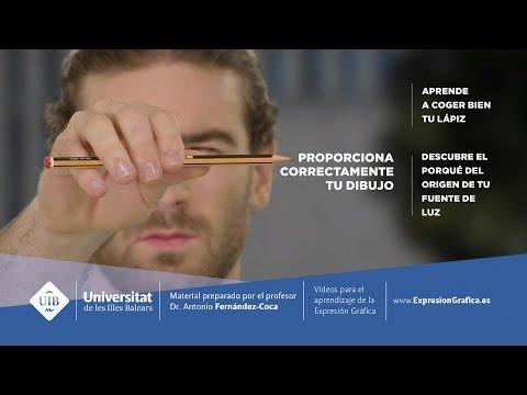 Módulo 2. Proporcionar para entender espacios (subtitulado)