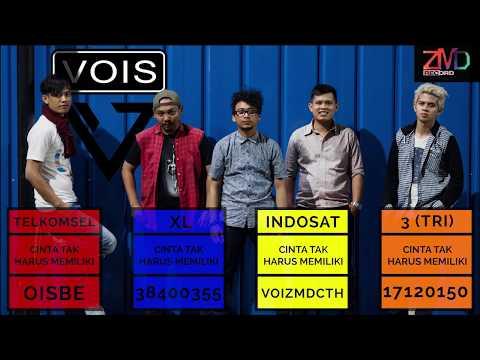 VOIS - Cinta Tak Harus Memiliki (Official Lyric Video)