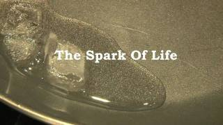 THE SPARK OF LIFE PROMO