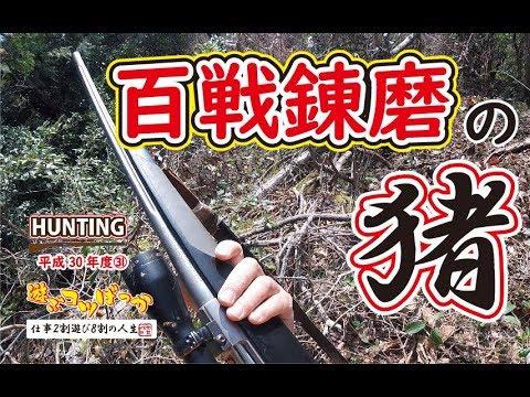 【猪猟】シーズン最終!百戦錬磨の猪!