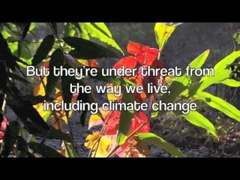 Climate Change and Health - a UK/Malta/Rwanda joint project