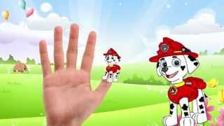 PAW PATROL Finger Family Collection - Nursery Rhymes Paw Patrol