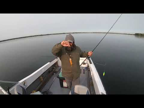 Early Fall, Mid-September Walleye Fishing Oneida Lake, NY