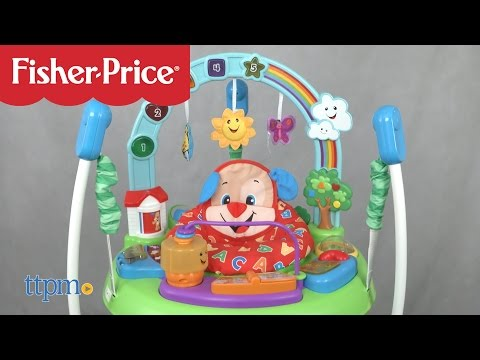 Laugh & Learn Puppy's Activity Jumperoo From Fisher-Price