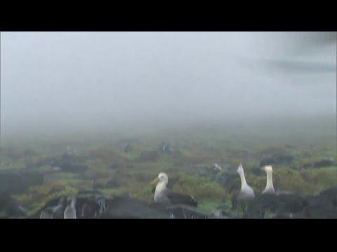 Equator Power of an Ocean Documentary HD