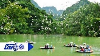 Gặp ông chủ vườn cò lớn nhất Tây Nam Bộ | VTC