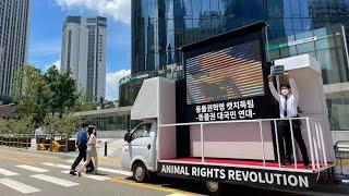 스크린 캠페인 집회 2회차 명동 Seoul   Stop…