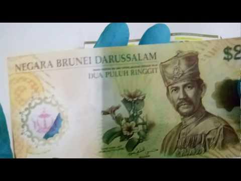 Brunei 2007 Polymer Series 20 B$ banknote