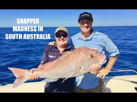 EP 15 - Spencer Gulf Cast | ESCAPE FISHING WITH ET