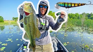 Topwater Bass Fishing | Post Spawn CRUNCHING!