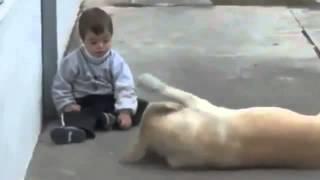 Трогательное видео о дружбе ребенка с собакой