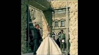 НЕРЕАЛЬНАЯ СВАДЬБА Никиты Преснякова и Алены Красновой 27 07 17 видео