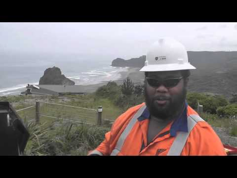 RMU maintenance  in Piha