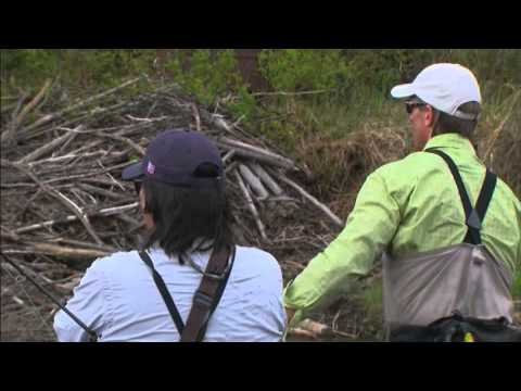 Trout Unlimited: On The Rise 2011 - Episode 4 - Upper Connecticut River, NH