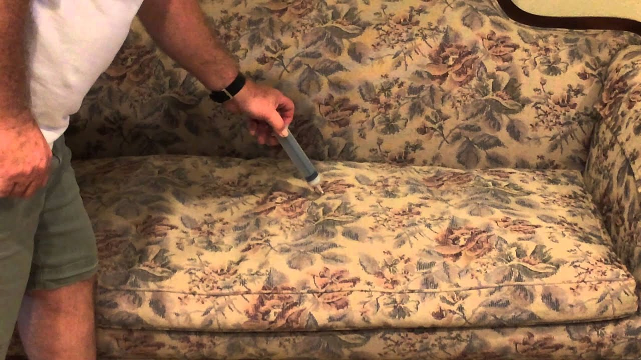 Cat Urine On Sofa Cushion Small Futon Bed Leather