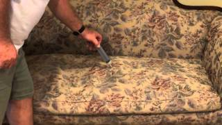 How To Remove Dog And Cat Urine From Couch