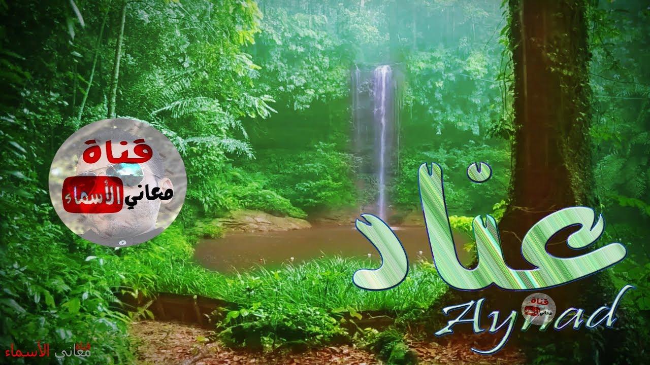 معنى اسم عناد وصفات حاملة هذا الاسم Aynad Youtube
