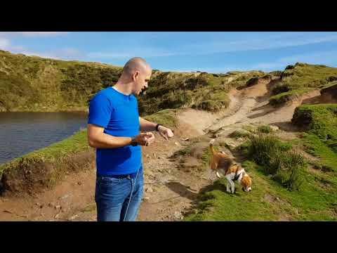CrazyWell Pool   Burrator Reservoir   Dartmoor   Days Out