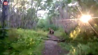Мужик и медведи