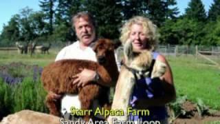 Visit Local Oregon Farm-Sandy Area Farm Loop-Starr Alpacas