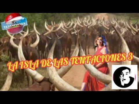 la-isla-de-las-tentaciones-3/capitulo-1-estreno-/los-cotilleos-de-ana-resumen
