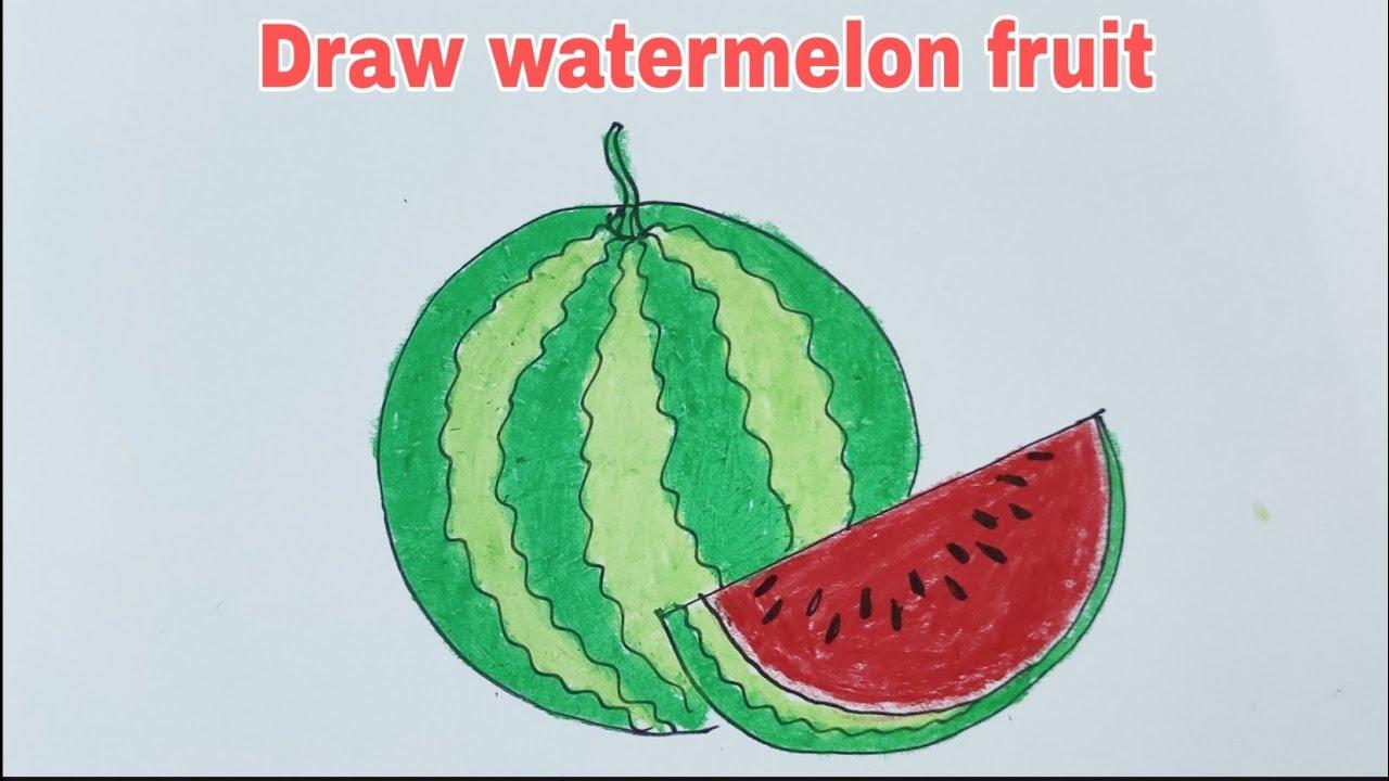 How to draw watermelon | Vẽ quả dưa hấu