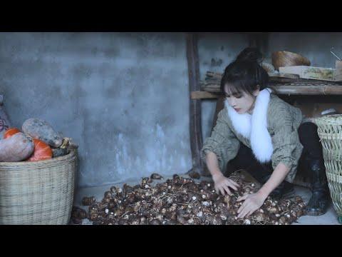 陸綜-李子柒 Liziqi -EP 014-芋頭的一生,辣椒…是送的