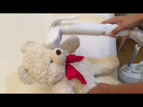 steam cleaning teddy bear
