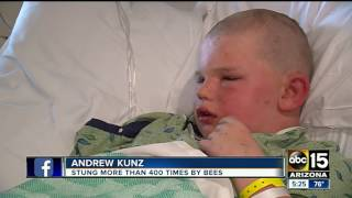Boy recovering after bee attack in Safford