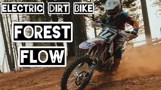 Fast Electric Dirt Bike Takes On The Forest - PiPi Valley MotoVlog With My Alta Redshift MXR
