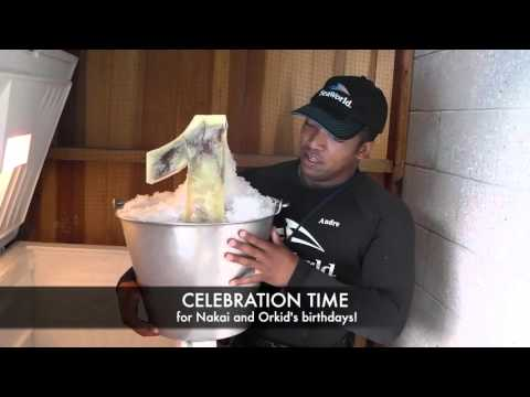 The Making Of Nakai And Orkids Birthday Cakes