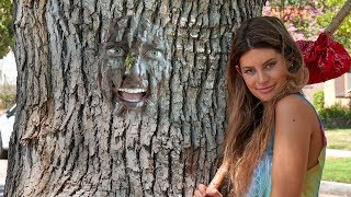 funny hannah stocking vines