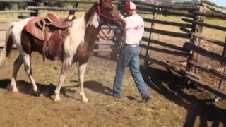 Wind River Reservation Horse Breaking @ Thunder Ranch In Ethete Wyoming